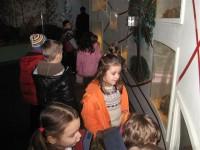 muzeul stiintei4